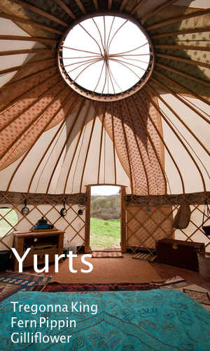 Yurt Selfcatering Holiday Cornwall Glamping